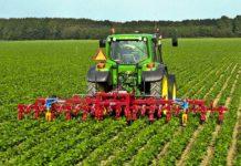 subventiile pe suprafata agicultura