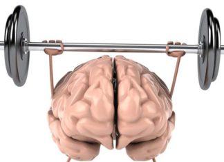 alimente hrana pentru creier