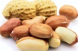 proteine arahide