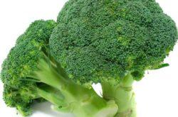 proteine din brocolli