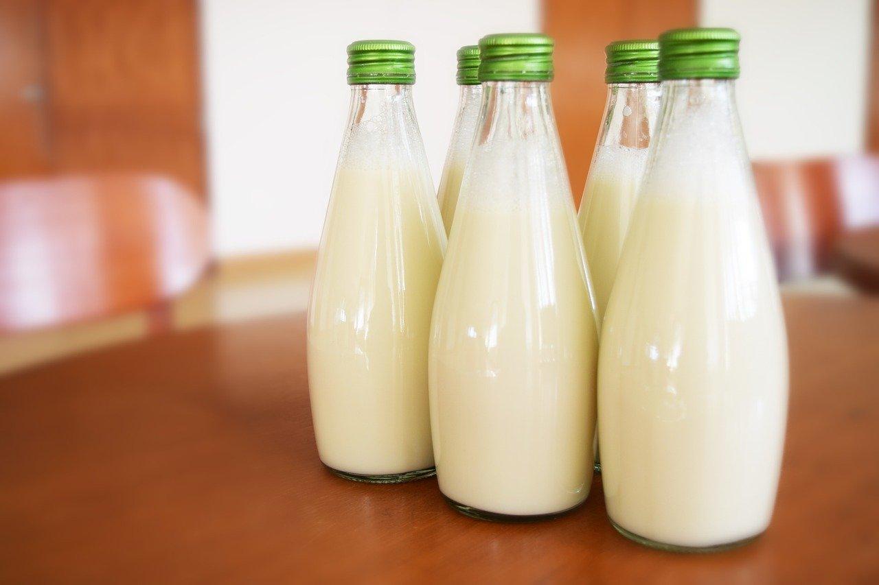 lapte bio